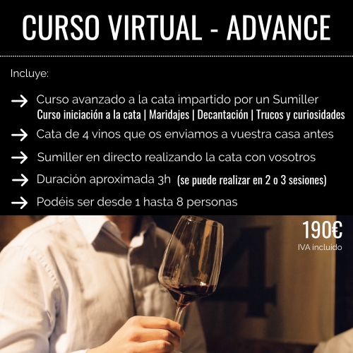 curso virtual advance